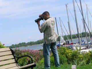 Ingyenes képek weboldalra - Olcsó weboldal készítés